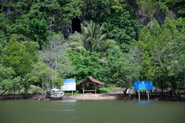 Из мангров можно переправиться на другой берег и полазить по пещерам